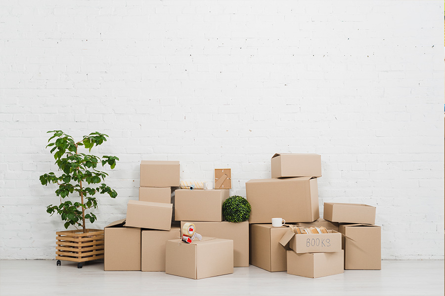 What Are the Different Types of Moving Services?